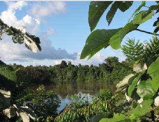 Schutzgebiet Pucacuro. Bild: SERNANP.